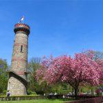 Toelle Turm