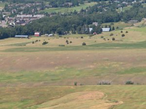 View of Otto's Farm from the M